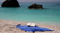 Summer relax: book, sunglasses at sea towel near the water video