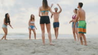 Summer with friends: play volley by the sea video