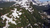 Summertime Aerial Shot of Mountain Forest Partially Covered in Snow video