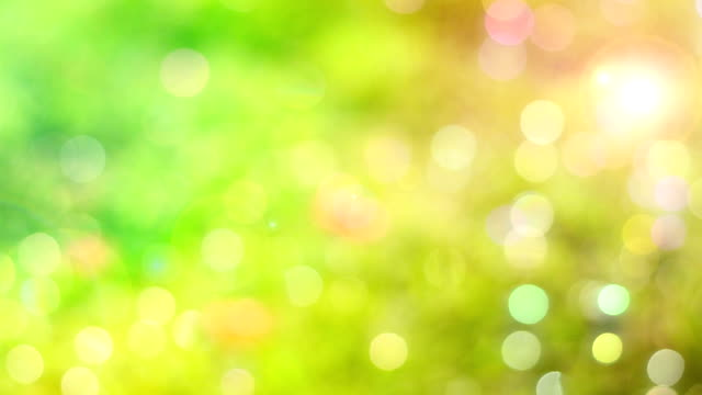 sun light bokeh natural background video