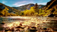 Sun light in river video