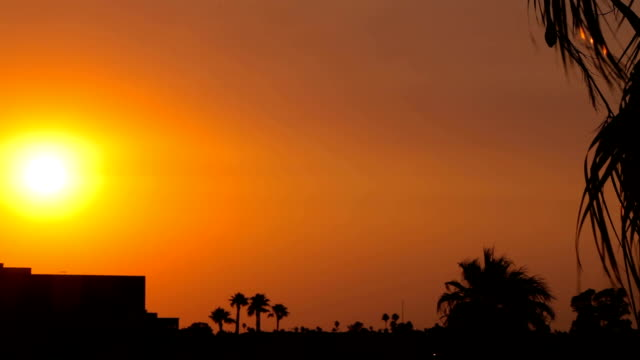 Sun Sets Over a Building and Palm Trees in the Distance video