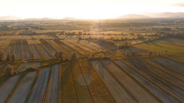 AERIAL Sun setting over fields video