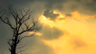 Sun shining through the clouds video