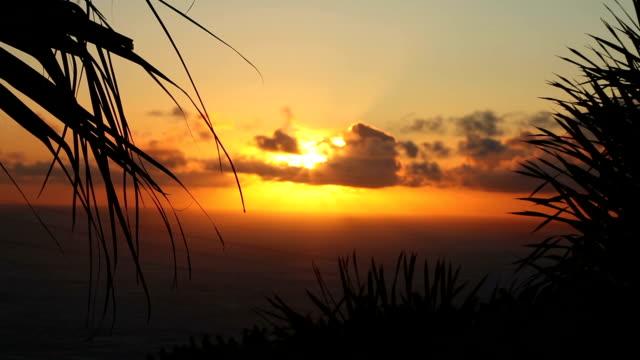 Sundown on the beach video