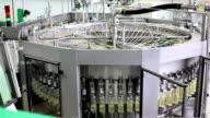 Sunflower oil factory video