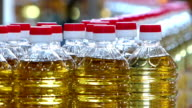 Sunflower oil on production line video