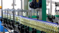 Sunflower seed oil factory video