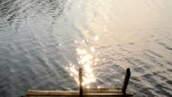 Sunlight like popping stars reflected from the lake wate video