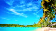 Sunny beach. video