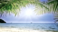 Sunny beach video