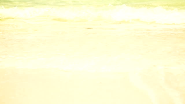sunny beach with water waves video