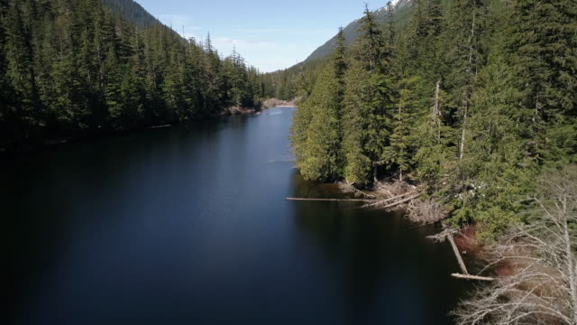 Sunny Day Aerial of Pacific Northwest Alpine Barclay Lake in Washington with Evergreen Trees video