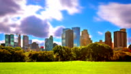 Sunny day in Central Park. NYC video