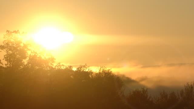 Sunrise 2 video