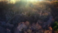 Sunrise Aerial looking down on foggy landscape, winding river video