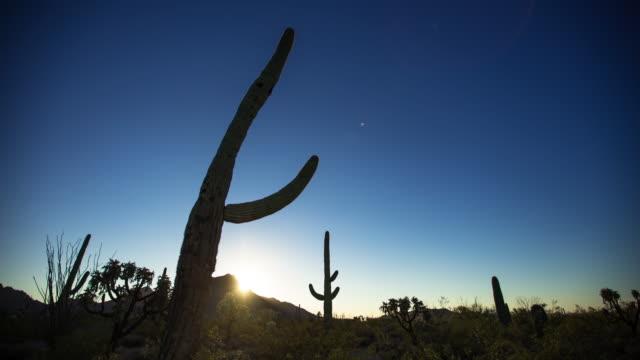Sunrise at Saguaro National Monument - Time Lapse video