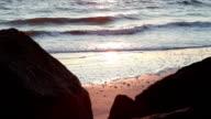 Sunrise at the beach video