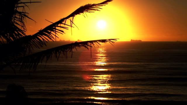 Sunrise at the Indian Ocean video