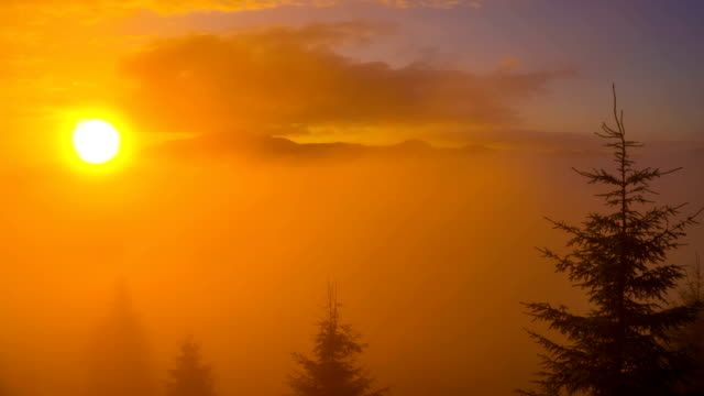 Sunrise in Carpathian Mountains. video