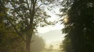 T/L Sunrise In Foggy Landscape video