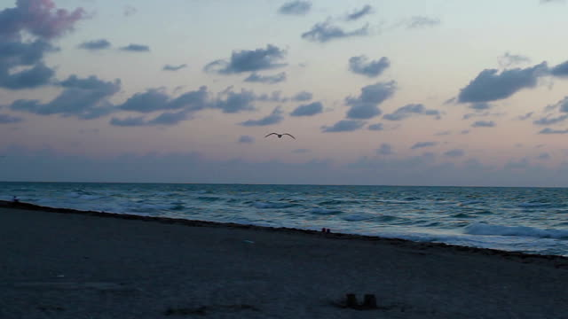 Sunrise in Miami Beach video