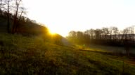 Sunrise in the forest. The sun rises from behind the hill. video