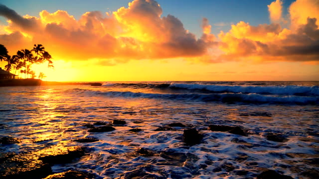 Sunrise over beach in Kauai, Hawaii video