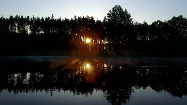 sunrise over the forest and lake. Morning landscape video