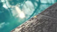 Sunrise Poolside video
