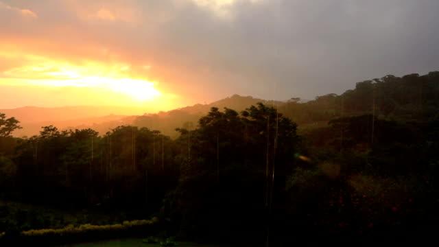 Sunset and rain over rainforest video