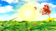 sunset animation video