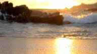 Sunset beach background video