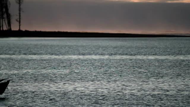 Sunset Boat video