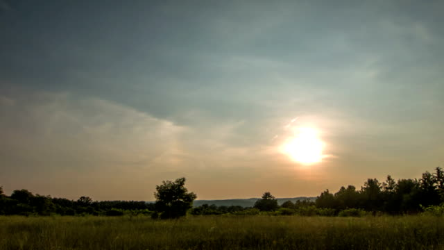 Sunset field video