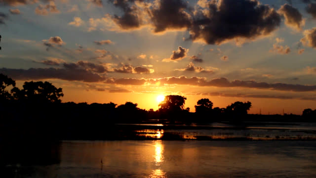 Sunset in flooded park video