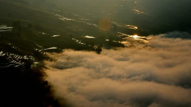 Sunset in terraced fields video