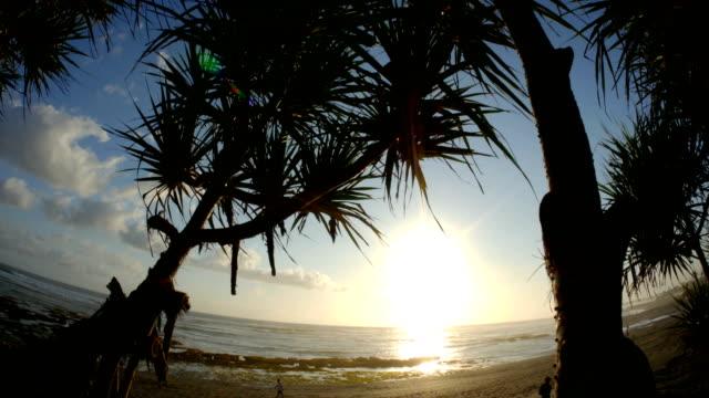 Sunset Ocean 4k video