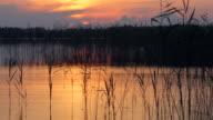 Sunset on a lakeshore video