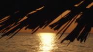 sunset on a tropical beach video