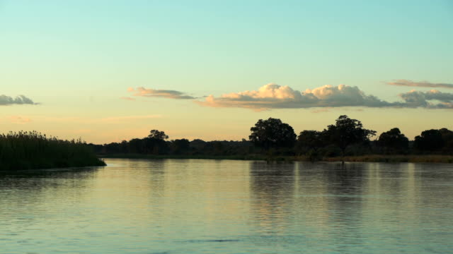 Sunset over African river. video