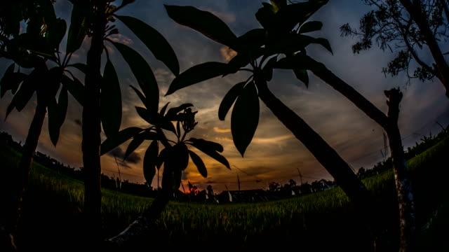 Sunset over Ocean Motionlapse Bali 4k video