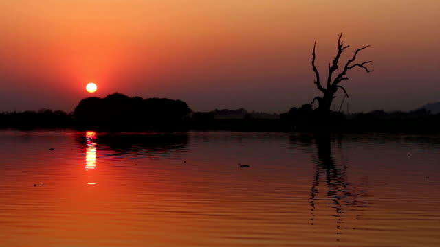 Sunset Over the Lake and a Tree video