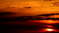 Sunset over the tropical areas video