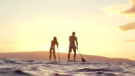 Sunset Silhouette Active Couple Stand Up Paddling On Summer Day video