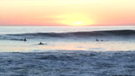 sunset surf video
