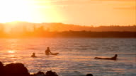 Sunset Surfing at The Pass, Byron Bay video