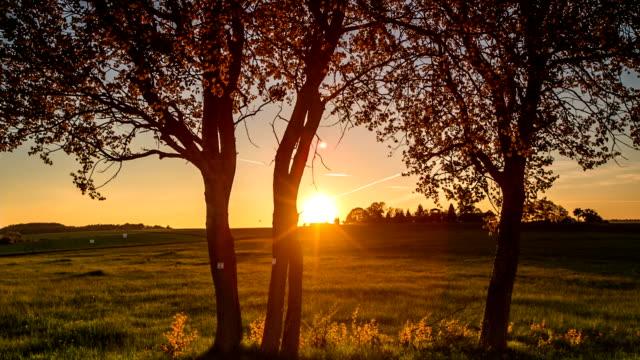 CRANE DOWN: Sunset video
