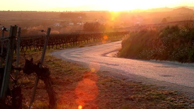 Sunset views in Penedés country road video
