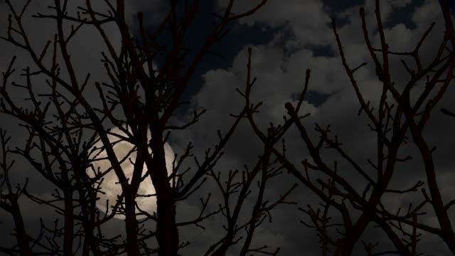 HD Super Moon Night video